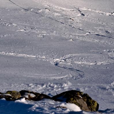 Zwischen den Felspassagen gab es noch einge Lines