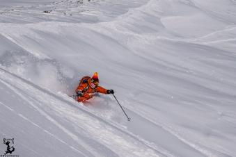 Maxi tief im Schnee