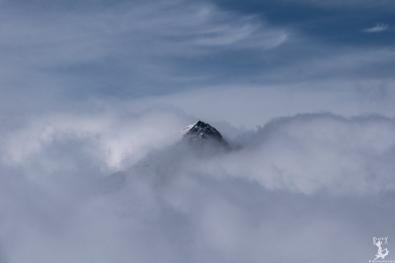 Die Hohe Warte im Nebel