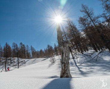 """Das """"Steilstück"""" vor dem Gipfel"""